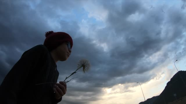 Happy boy blowing dandelion