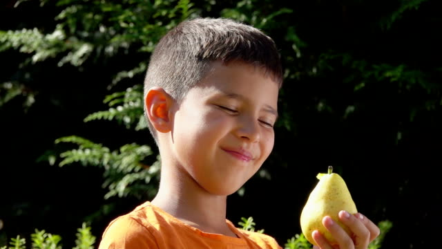 Happy boy is eating a delicious ripe pear outdoors Happy boy is eating a delicious ripe pear outdoors on the sunny summer day pear stock videos & royalty-free footage