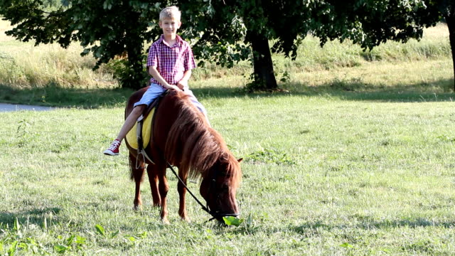 ハッピーな少年ポニー馬の乗馬 - 動物に乗る点の映像素材/bロール