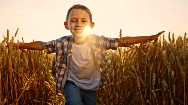 slo mo ハッピーな少年ランニングのフィールドに腕を広げる - 男の子点の映像素材/bロール