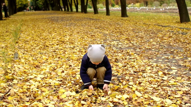 Happy boy throwing yellow leaves in autumn park. video