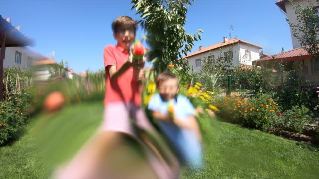 Happy brothers playing with water gun on grass