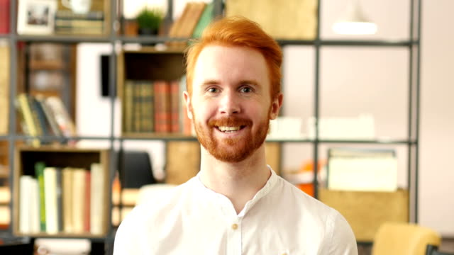 happy businessman, designer,  freelancer in office - coinvolgimento dei dipendenti video stock e b–roll