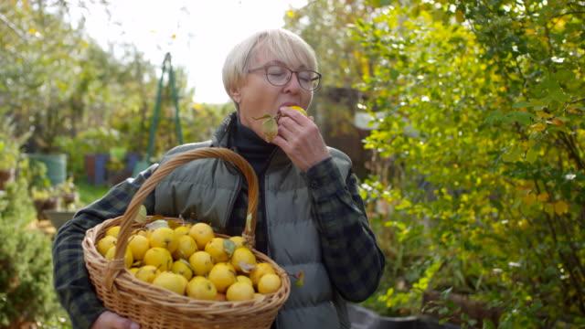 glückliche kaukasische dame genießt frisch gepflückten hausgemachten apfel - fülle stock-videos und b-roll-filmmaterial