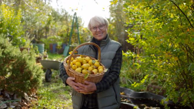 mutlu kafkas lady orchard elma sepeti ile poz - bahçe ekipmanları stok videoları ve detay görüntü çekimi