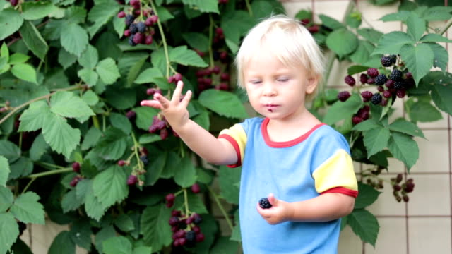 Happy child, holding blackberries, in garden