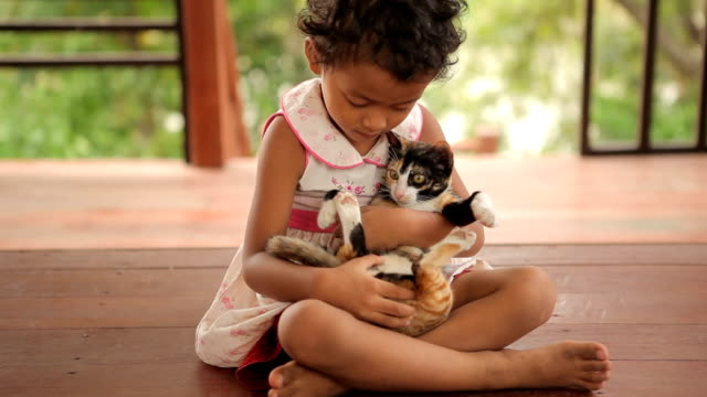 Happy child with cat in home - video