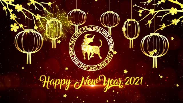 2021年新年快樂,2021年元宵裝飾向量設計。牛年(中文翻譯快樂中國新年,牛年) - chinese new year 個影片檔及 b 捲影像