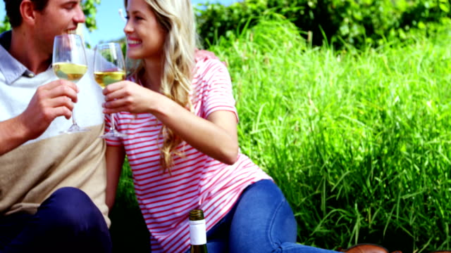 ブドウ畑でワインを持っている幸せなカップル ビデオ