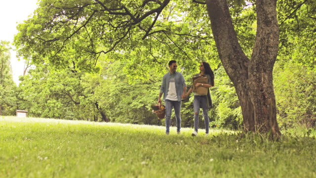 happy couple holding hands while walking in nature and going on picnic. - picnic stock videos and b-roll footage
