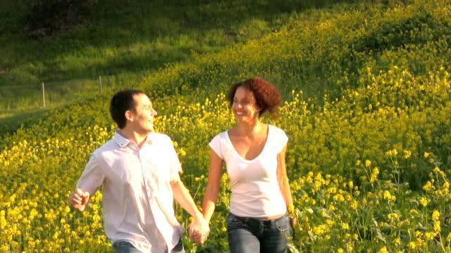 Feliz pareja jugando y beso en un campo radiante. - vídeo