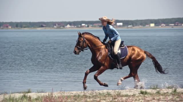happy cowgirl galloping on russian don mare - cavalla video stock e b–roll