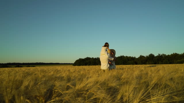 Happy dad carrying child on shoulders and approaching mom in wheat field video