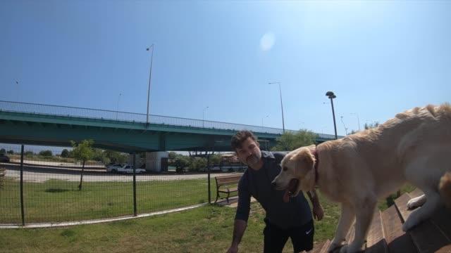 stockvideo's en b-roll-footage met gelukkige hond op een hindernisbaan - alleen één mid volwassen man