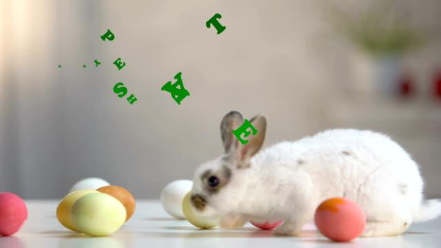 happy easter inschrift, pelzigen hase mit gefärbten eiern auf tisch, grußkarte - osterhase stock-videos und b-roll-filmmaterial