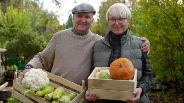 glückliches älteres paar zeigt kisten von selbst angebautem gemüse - fülle stock-videos und b-roll-filmmaterial