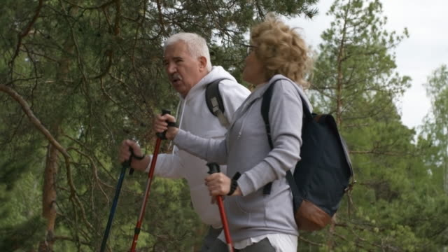 Happy Elderly People Hiking in Forest