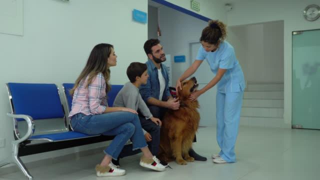 lycklig familj på en veterinary avgången deras hund för check upp så trevlig assistenten tar honom med en koppel - veterinär, undersökning bildbanksvideor och videomaterial från bakom kulisserna