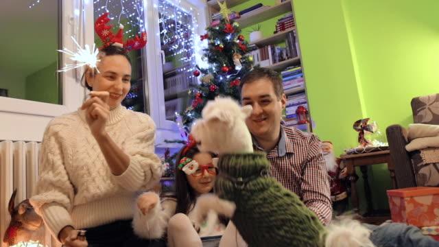 幸せな家族は自宅でクリスマスと大晦日を祝います - イヌ科点の映像素材/bロール