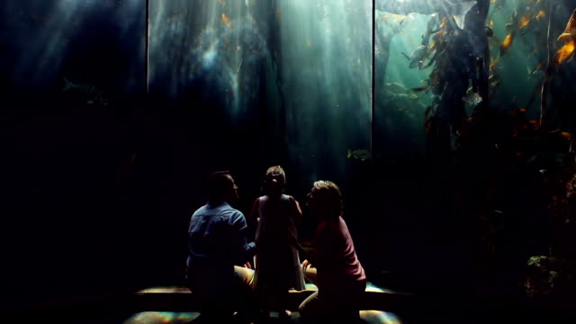 Happy family looking at fish in the tank影片