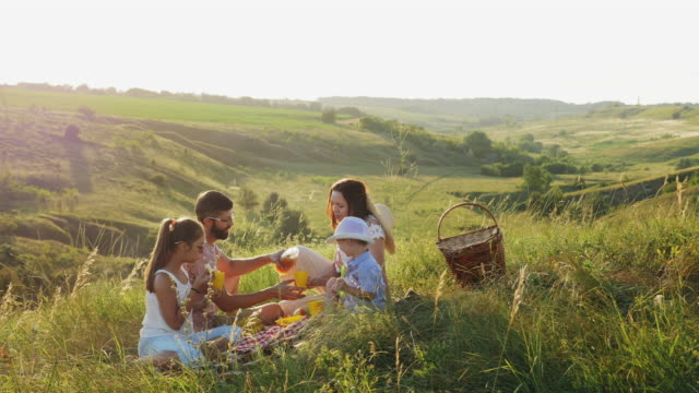 happy family spends time on a picnic - picnic video stock e b–roll