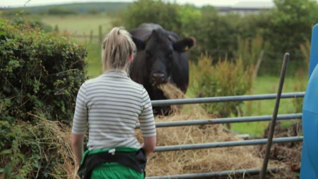 Happy Farmer Taking Care of Cattle
