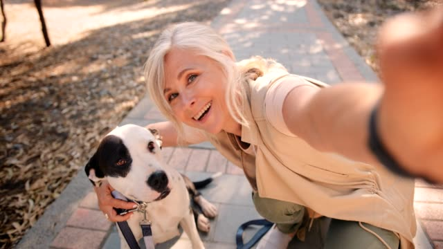 happy fashionable senior woman taking selfies with dog in nature - cinquantenne video stock e b–roll
