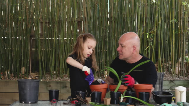 happy father and daughter gardening together - gardening video stock e b–roll