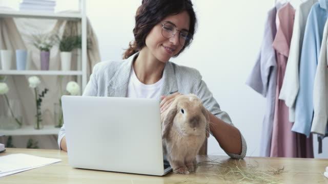mutlu kadın tasarımcı işyerinde sevimli komik tavşan evcil hayvan okşayarak - tavşan hayvan stok videoları ve detay görüntü çekimi