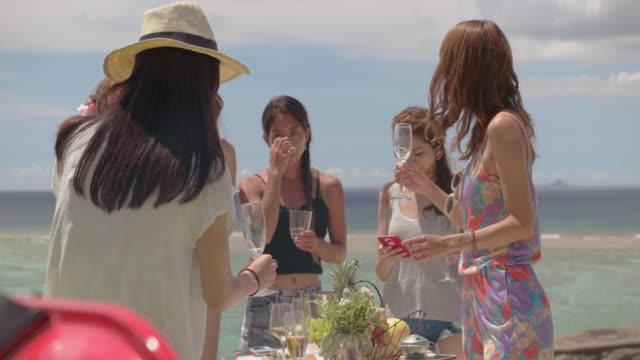 幸せな友人のビーチで昼食します。 - バーベキュー点の映像素材/bロール