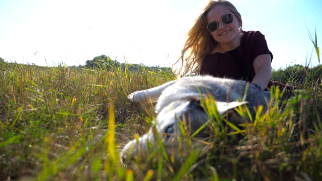 happy girl in sunglasses sitting on grass and caress her siberian husky at field. young woman playing with her pet at meadow. love and friendship with domestic animal. low angle view slow motion - cane husky video stock e b–roll