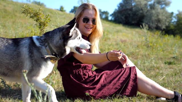 vidéos et rushes de fille heureuse avec des cheveux blonds assis sur l'herbe verte et son husky sibérien à meadow de formation sur une journée ensoleillée. jeune femme tenant dans la main snack et jouant avec son chien au champ. bouchent slow motion - vue latérale