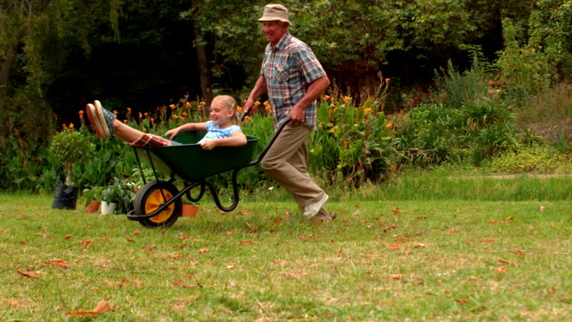 stockvideo's en b-roll-footage met happy grandfather and his granddaughter with a wheelbarrow - kruiwagen met gereedschap
