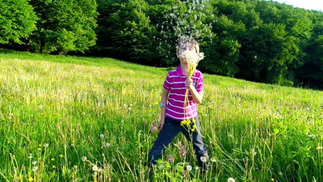 Happy Kid Blowing Dandelion Flower video