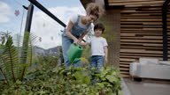 istock Happy Latin American mother teaching her son how to water the plants at their home garden 1284926188