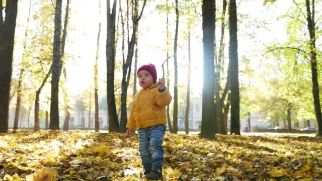 happy little boy playing in Park in autumn
