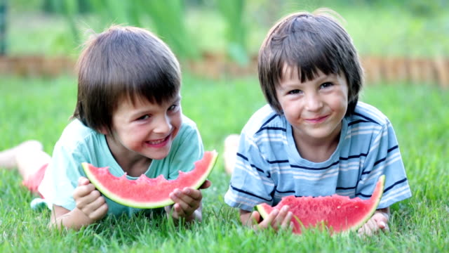Happy little children, boy brothers with watermelon in a garden, summertime video