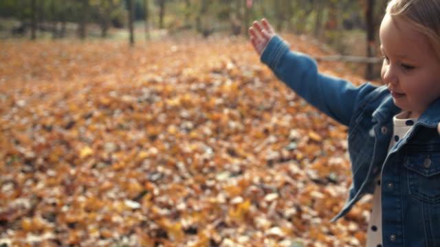 秋の季節に犬とお父さんの手を握って走っているハッピーリトルガール ビデオ