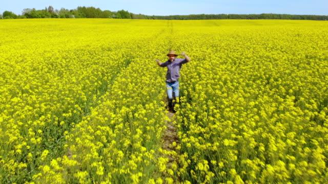 happy man çiftçi dans sahada tecavüz blossom zevk. eğlenceli komik viral dans özgürlük kutluyor. dansın tadını çıkaran adam. neşeli adam çiftçi dans. çiçekli kolza tarlası mavi gökyüzü. - tiktok stok videoları ve detay görüntü çekimi