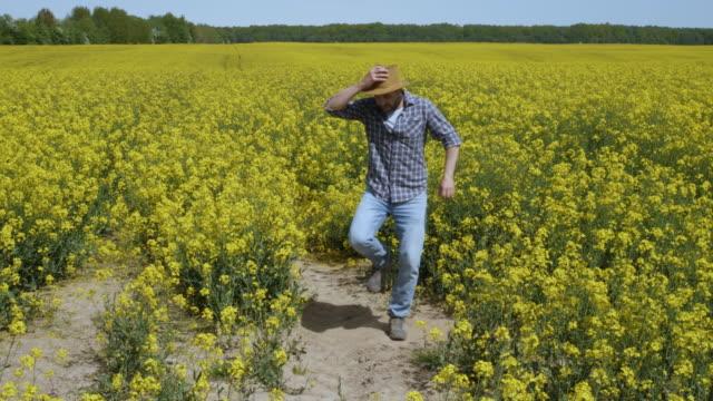 happy man çiftçi dans sahada tecavüz blossom zevk. eğlenceli komik viral dans özgürlük kutluyor. dansın tadını çıkaran adam. neşeli adam çiftçi dans. yavaş çekim. çiçekli kolza tarlası mavi gökyüzü. - tiktok stok videoları ve detay görüntü çekimi