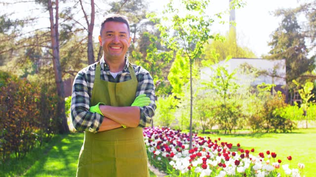 happy man in apron at summer garden gardening and people concept - happy smiling middle-aged man in apron with crossed hands at summer garden plaid stock videos & royalty-free footage
