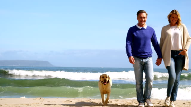 happy mature couple walking with dog on the beach - quarantenne video stock e b–roll