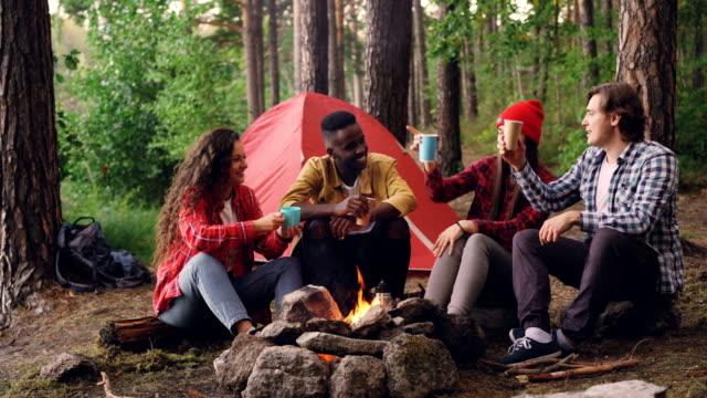 ホットド リンクを飲むし、寒い秋の日に休んでのキャンプファイヤーの周りの話とガラスをチリンと旅行者の幸せな多民族のグループ。 - キャンプ点の映像素材/bロール