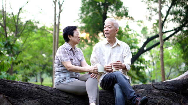 幸せな古いアジア シニア カップル朝公園でデートします。コーヒー会話 - 老夫婦点の映像素材/bロール