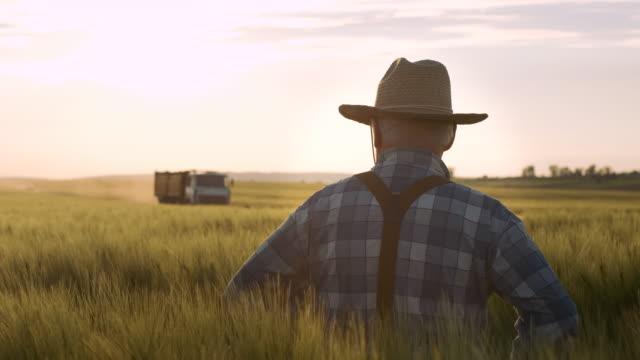 vidéos et rushes de vieux fermier heureux. récolte. agriculture, concept agricole. - équipement agricole