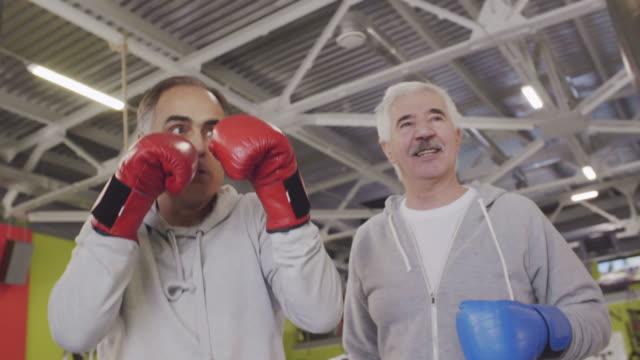 happy old sportsmen in fighting center - sacco per il pugilato video stock e b–roll