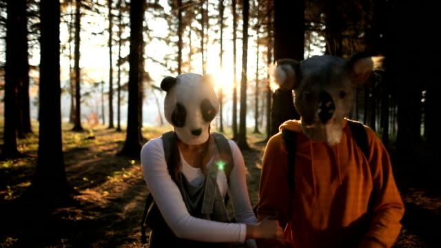 stockvideo's en b-roll-footage met gelukkig panda en koala in het forest. bedreigde soorten - teenager animal