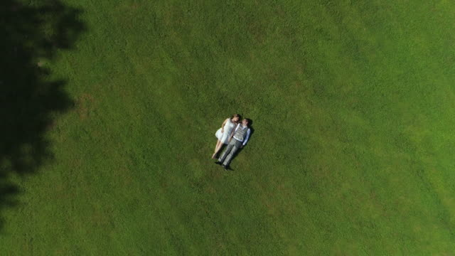 AERIAL TOP DOWN Happy parents to be relaxing side by side in field holding hands video
