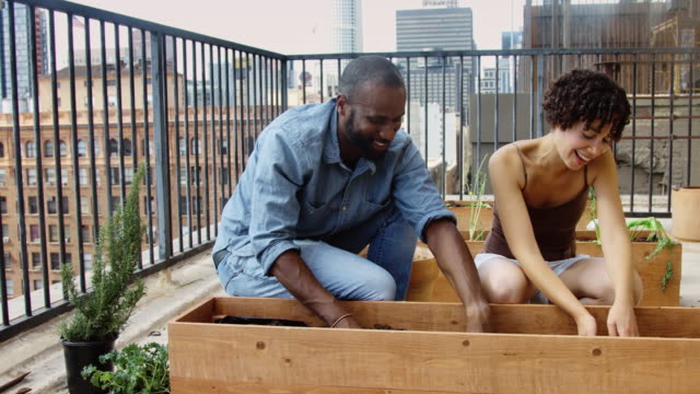 Happy People in Rooftop Vegetable Garden video