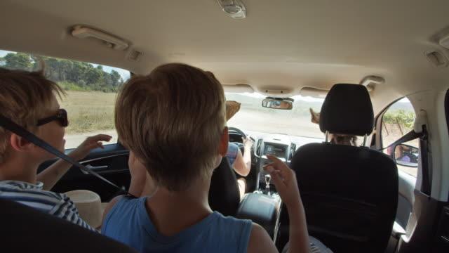 車で旅行ハッピー遊び心の子供たち - 楽しい点の映像素材/bロール